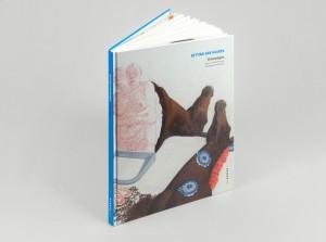 17ksp_bvh_haeutungen_cover_2web